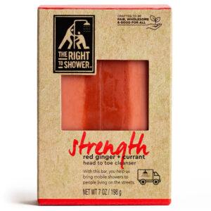 Strength Body Bar